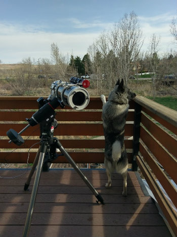 EQ-G tripod on use along with my pet dog
